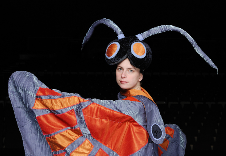 Costumes on stage - Butterfly