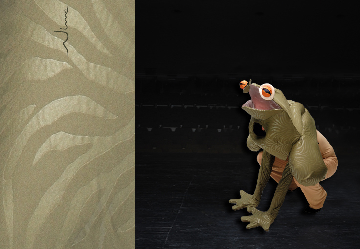 Costumes on stage - Frog