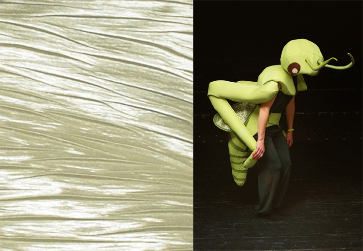 Costumes on stage - Grasshopper